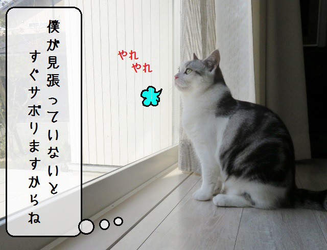 f:id:suzumesuzume:20181012144010j:plain