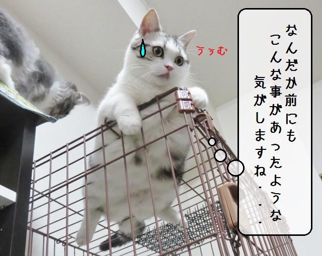 f:id:suzumesuzume:20181018152707j:plain
