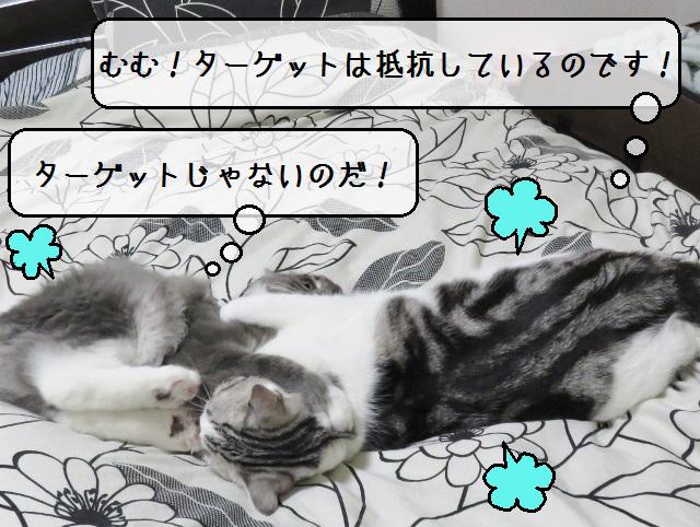 f:id:suzumesuzume:20181101142026j:plain