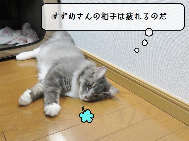 f:id:suzumesuzume:20181101142554j:plain