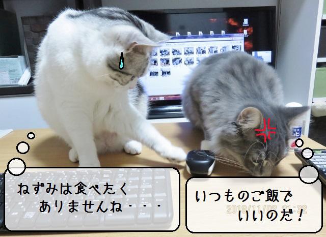 f:id:suzumesuzume:20181114145643j:plain