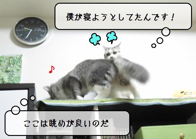 f:id:suzumesuzume:20181120161246j:plain