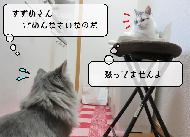 f:id:suzumesuzume:20181126154136j:plain