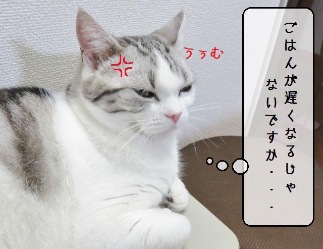 f:id:suzumesuzume:20181126154327j:plain
