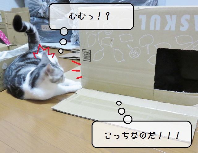 f:id:suzumesuzume:20181129005512j:plain