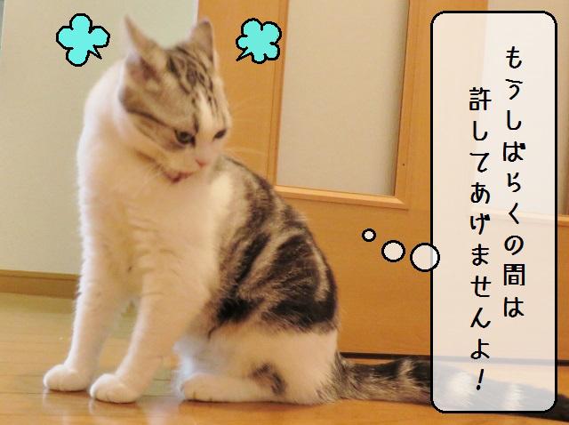 f:id:suzumesuzume:20181213125957j:plain