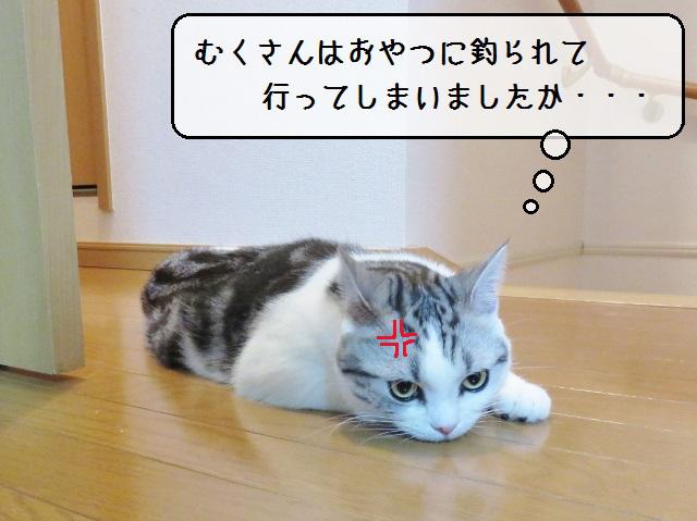 f:id:suzumesuzume:20181213130058j:plain