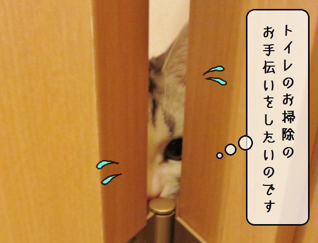 f:id:suzumesuzume:20181214191226j:plain