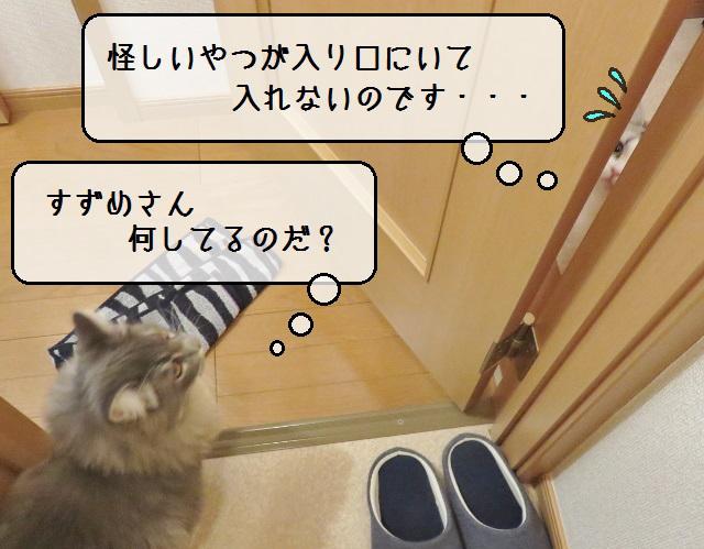 f:id:suzumesuzume:20181214191238j:plain