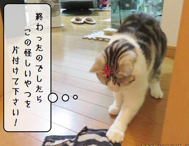 f:id:suzumesuzume:20181214191359j:plain