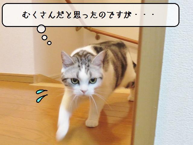f:id:suzumesuzume:20181217171917j:plain