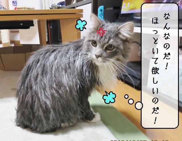 f:id:suzumesuzume:20181217171956j:plain