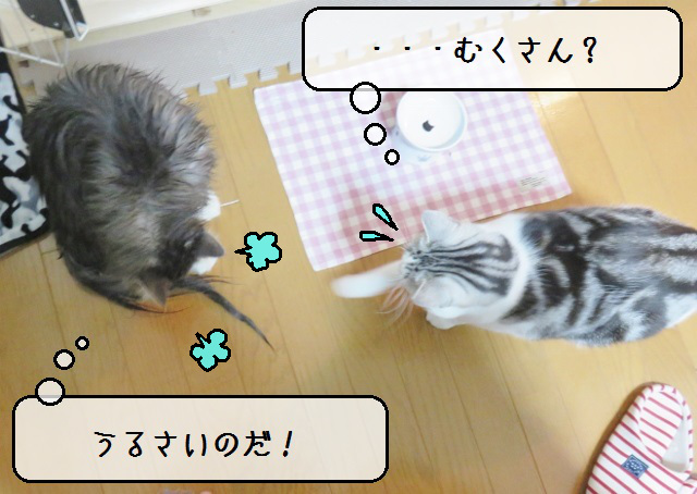 f:id:suzumesuzume:20181217172007j:plain