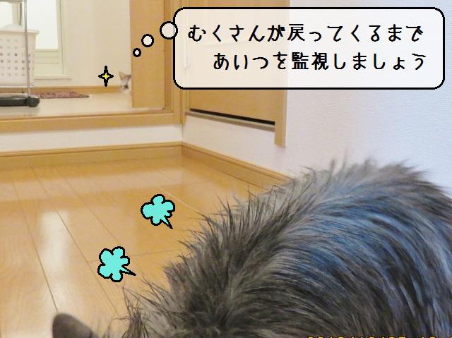 f:id:suzumesuzume:20181217172110j:plain