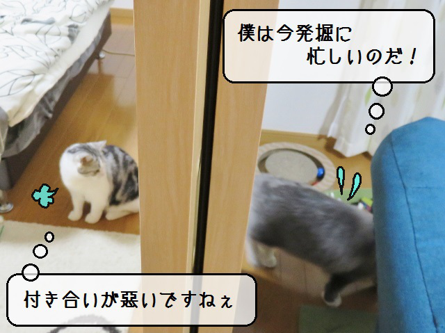 f:id:suzumesuzume:20181219140803j:plain