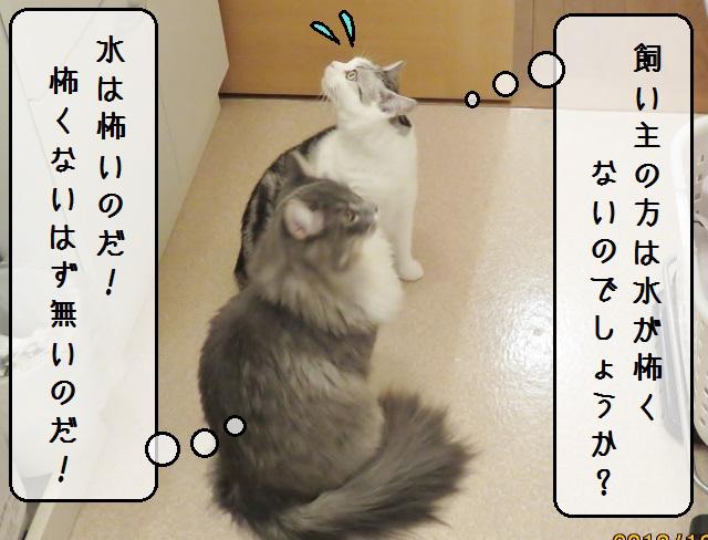 f:id:suzumesuzume:20181226212007j:plain
