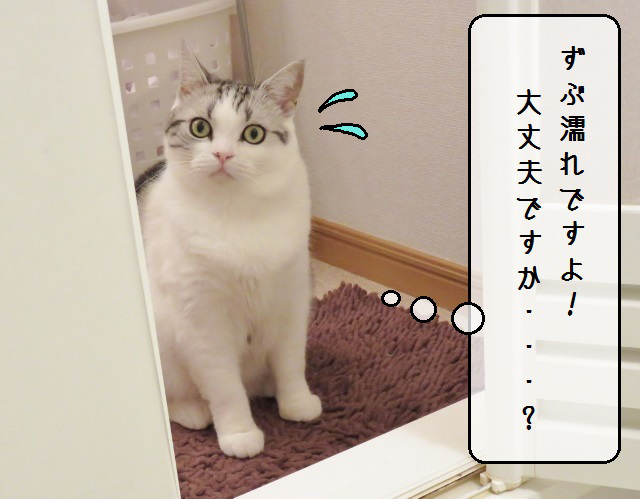 f:id:suzumesuzume:20181226212018j:plain