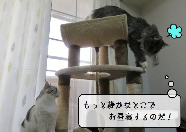 f:id:suzumesuzume:20190131144444j:plain