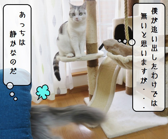 f:id:suzumesuzume:20190131144450j:plain