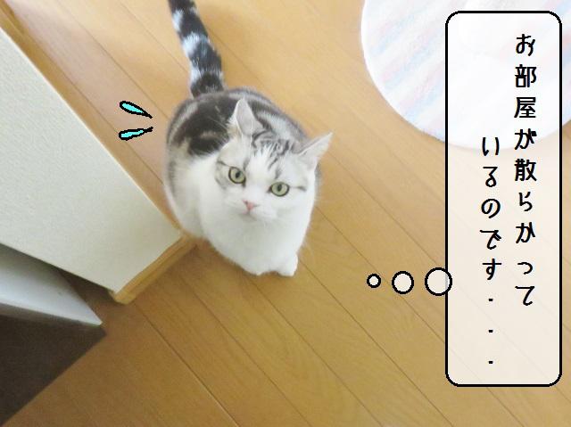 f:id:suzumesuzume:20190201201105j:plain