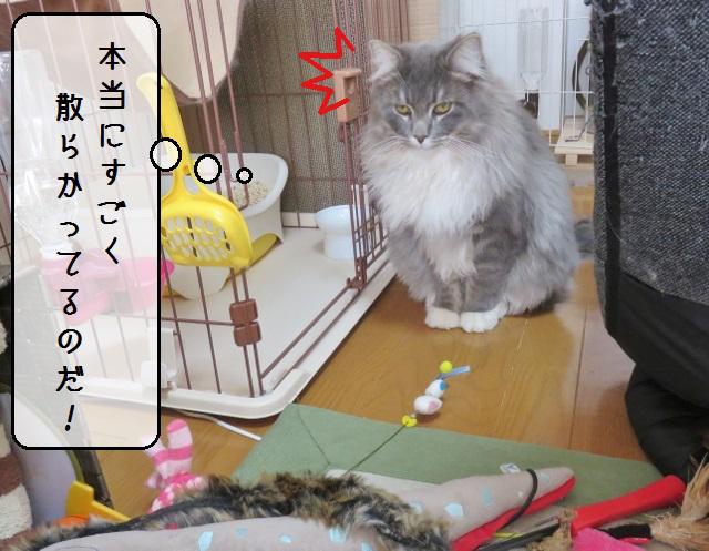 f:id:suzumesuzume:20190201201201j:plain