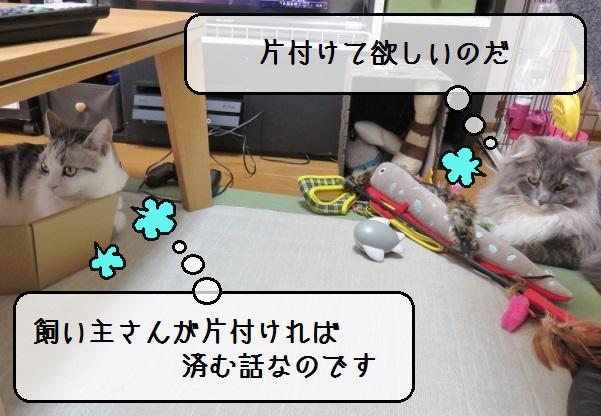 f:id:suzumesuzume:20190201201244j:plain