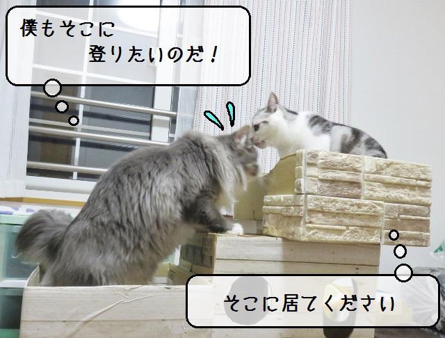f:id:suzumesuzume:20190212152622j:plain