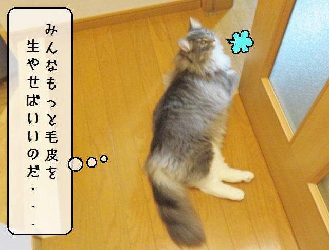 f:id:suzumesuzume:20190213143622j:plain