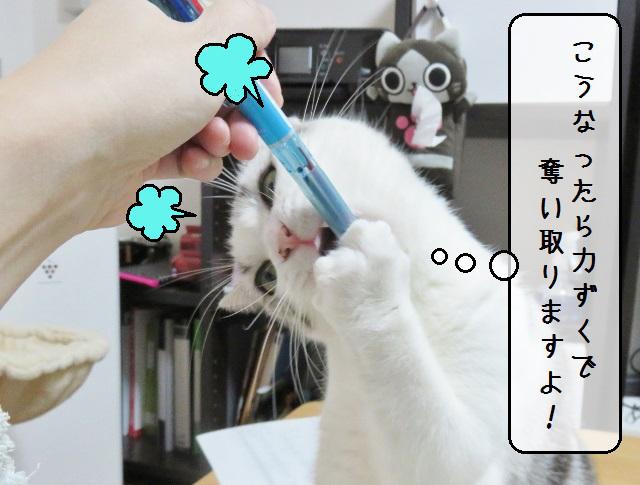 f:id:suzumesuzume:20190214132125j:plain