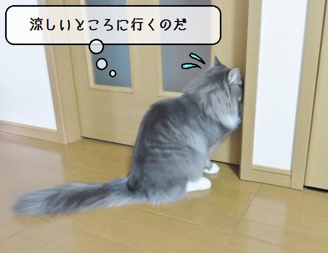 f:id:suzumesuzume:20190226152137j:plain