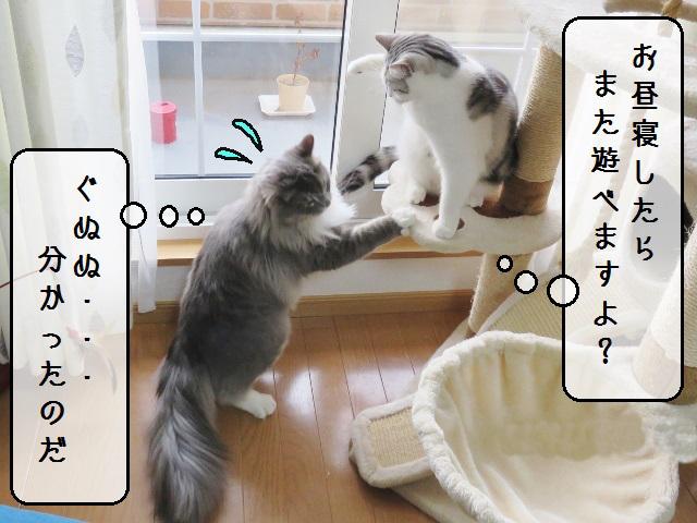 f:id:suzumesuzume:20190227153745j:plain