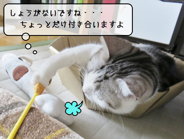 f:id:suzumesuzume:20190326135453j:plain