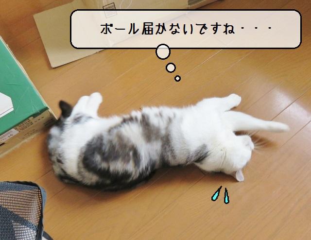 f:id:suzumesuzume:20190404212748j:plain