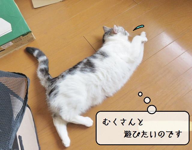 f:id:suzumesuzume:20190404212754j:plain