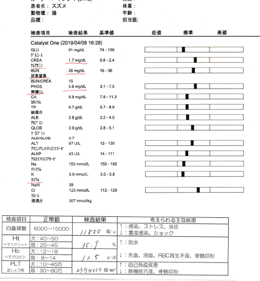 f:id:suzumesuzume:20190410122451p:plain