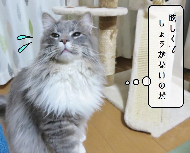 f:id:suzumesuzume:20190415141527j:plain