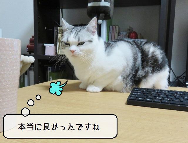 f:id:suzumesuzume:20190416150948j:plain
