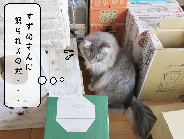 f:id:suzumesuzume:20190422144804j:plain