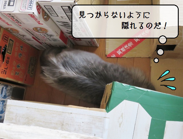 f:id:suzumesuzume:20190422144814j:plain