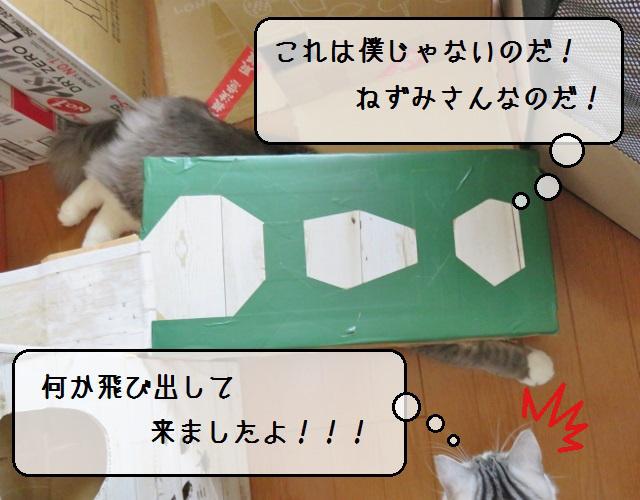 f:id:suzumesuzume:20190422144824j:plain