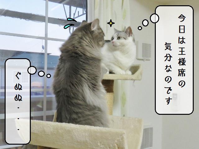f:id:suzumesuzume:20190423144148j:plain