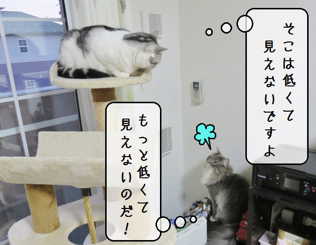 f:id:suzumesuzume:20190423144202j:plain
