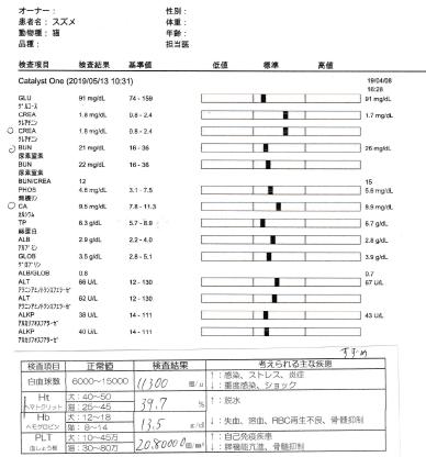 f:id:suzumesuzume:20190520201835p:plain