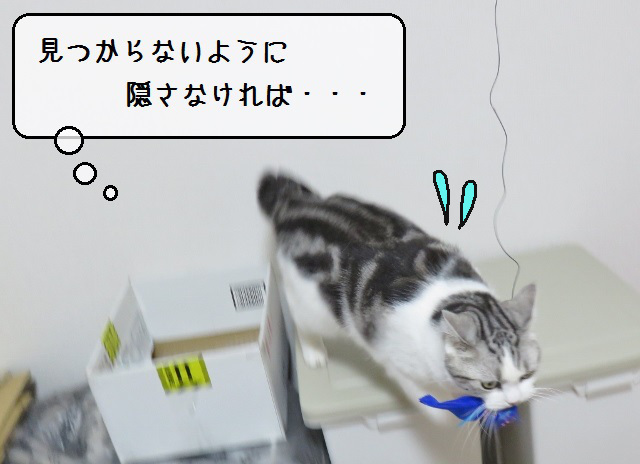 f:id:suzumesuzume:20190614201610j:plain