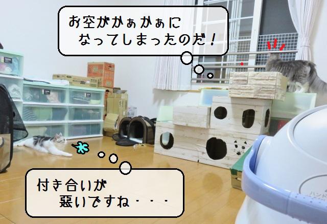 f:id:suzumesuzume:20190617150026j:plain