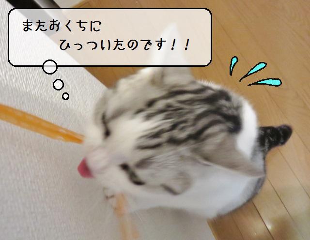 f:id:suzumesuzume:20190627135628j:plain