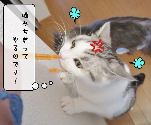 f:id:suzumesuzume:20190627135634j:plain