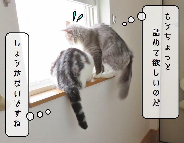 f:id:suzumesuzume:20190722140459j:plain