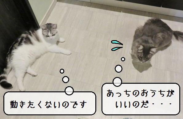 f:id:suzumesuzume:20190822173537j:plain