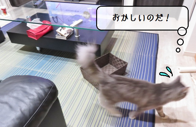 f:id:suzumesuzume:20190822173601j:plain